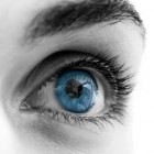 Apie stenopinius akinius